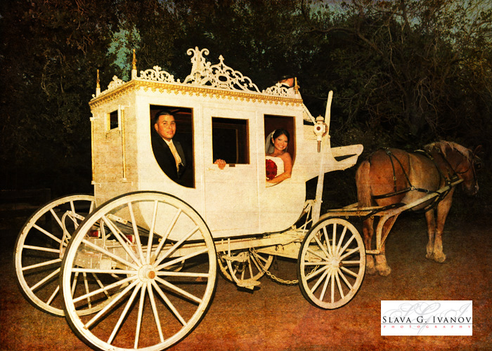 bride and groom leaving in a carridge from their wedding at oakland farm and ranch