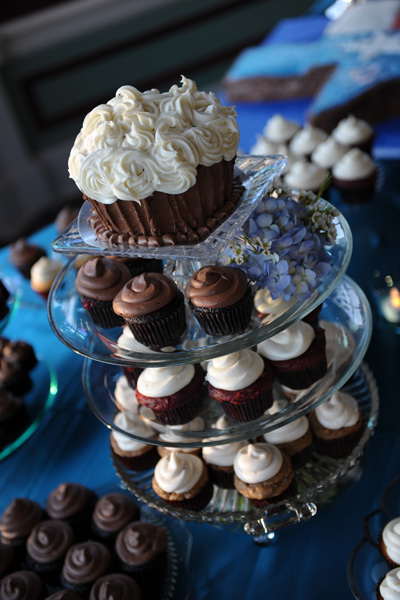 Wedding Reception Venues Houston on Cup Cake At Jewish Wedding Ceremony Reception Galveston Tx