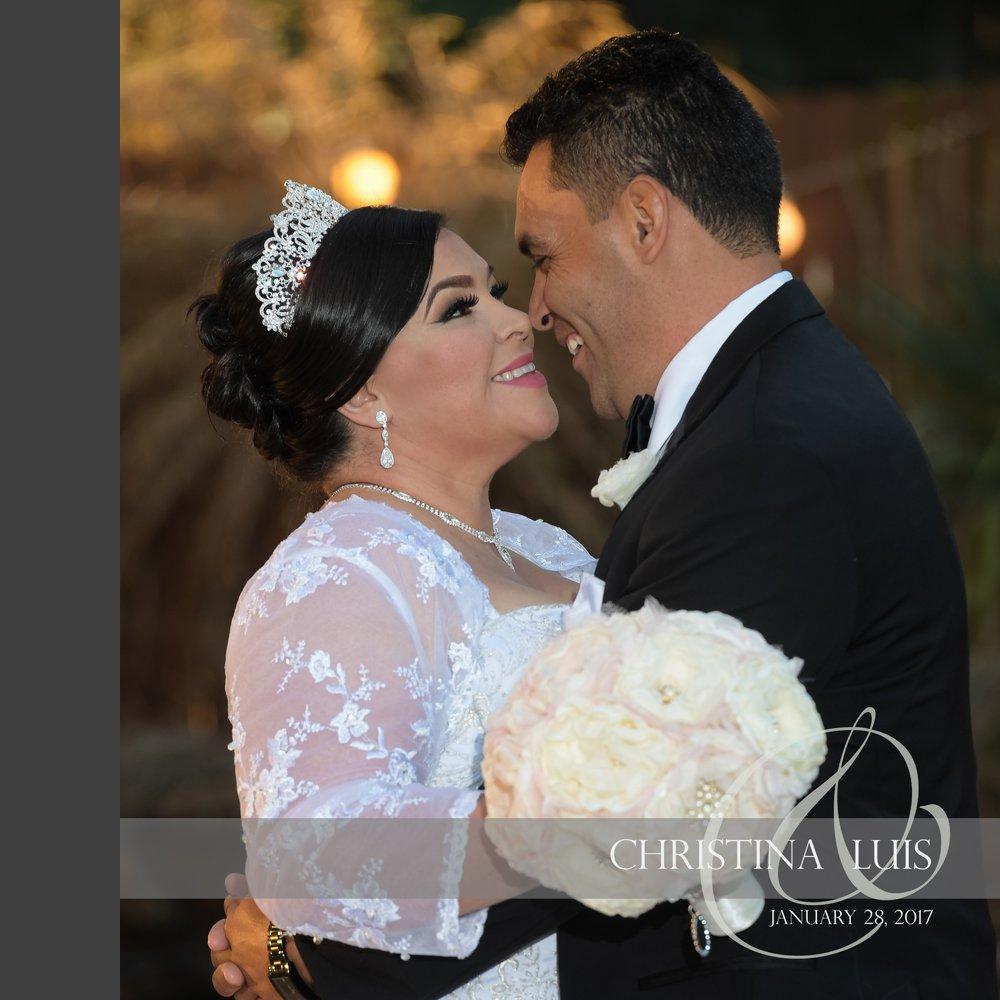 Houston Wedding Photographers: Houston Wedding Photographer